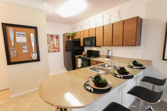 1200 Acqua Luxury Lifestyle Apartments - Business ...