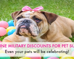 6 Companies That Offer Online Military Discounts On Pet Supplies